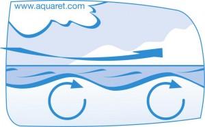 (C) Aquaret