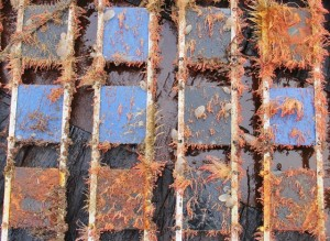 BioFREE panel recovered from EMEC's Shapinsay Sound tidal test site (Credit, Andrew Want, HWU-ICIT)
