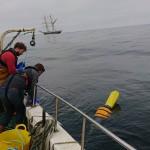 SEA Wave environmental monitoring at EMEC