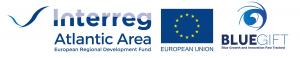 Blue-GIFT logo with Interreg AA -HighRes